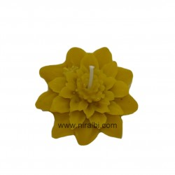 Ganpati shape candle mould