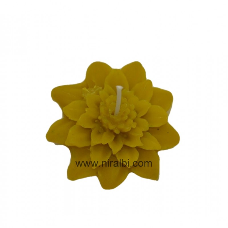 ganpati shape candle mould