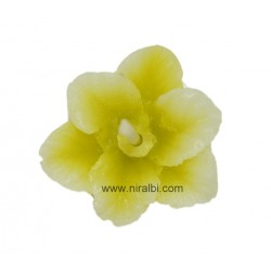 SL - 490: Orchid Flower
