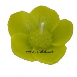 SL - 265: Flower