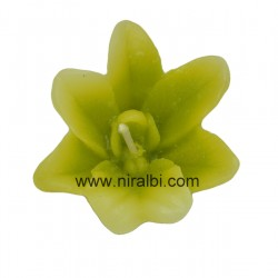 Aster Flower Silicon Mould