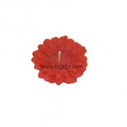 SL - 491: Hibiscus flower